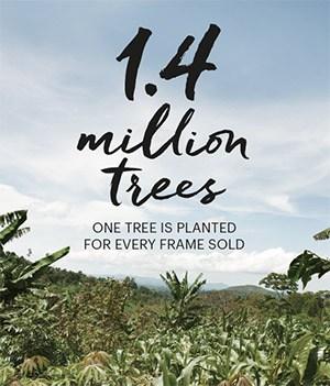eco-one-frame-one-tree